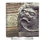 Bali Sculpture Shower Curtain