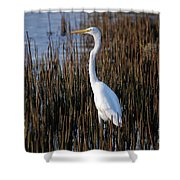 17- Great Egret Shower Curtain
