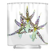 Orquid Shower Curtain