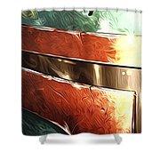 Saga Star Wars Art Shower Curtain