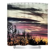 Horizon Shower Curtain