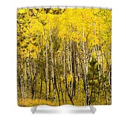 Rocky Mountain Autumn Shower Curtain