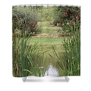 166 Shower Curtain