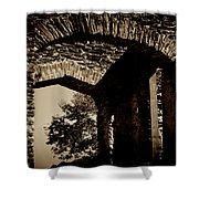 1833 Ruins Shower Curtain