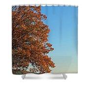 170 Shower Curtain