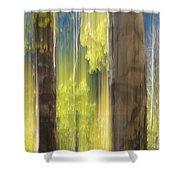 18x34 Shower Curtain