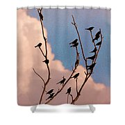 19 Blackbirds Shower Curtain