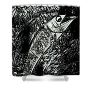 Swordfish Shower Curtain