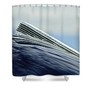 1941 Chevrolet Hood Ornament 2 Shower Curtain