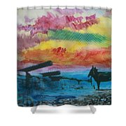 1950's - In The Hopi Village Shower Curtain