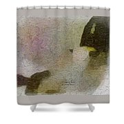 1950's - Navajo Rodeo - Dust Shower Curtain