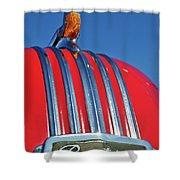 1951 Pontiac Chief Hood Ornament 2 Shower Curtain by Jill Reger