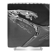 1966 Jaguar Hood Ornament 2 Shower Curtain