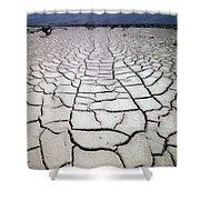 1a6832 Mud Cracks In Death Valley Shower Curtain