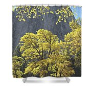 1m6610 Middle Cathedral Rock In Autumn Shower Curtain