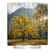 1m6611-oak Trees And Middle Cathedral Rock In Autumn Shower Curtain