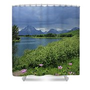 1m9236 Mt. Moran And Sticky Geranium Shower Curtain