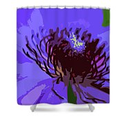 A Path To Redemption Shower Curtain