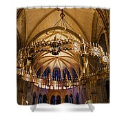 Abbey Of Saint - Remi Reims Shower Curtain