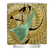 Abstract #68 Shower Curtain