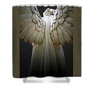 Angel Series Shower Curtain