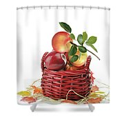 Apples In A Basket  Shower Curtain