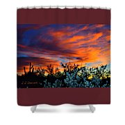 Arizona Sky Shower Curtain