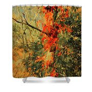 Autumn Landscape #4 Shower Curtain