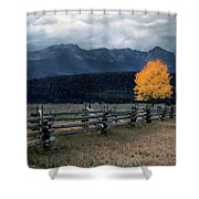 Autumn Light Shower Curtain
