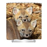 Baby Fox Kits Shower Curtain