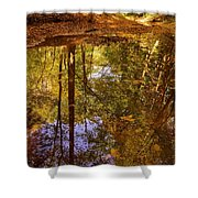 Bach Hollow Shower Curtain