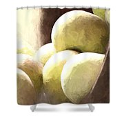 Basket Of Apples Shower Curtain