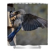 Beak To Beak Shower Curtain