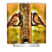 2 Bird's Eating  Shower Curtain