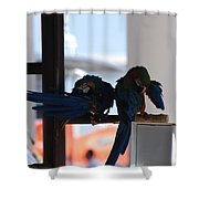 2 Birds Shower Curtain