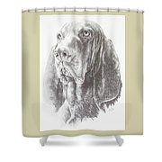 Black And Tan Coonhound Shower Curtain by Barbara Keith