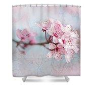 Black Cherry Plum Blossom Shower Curtain
