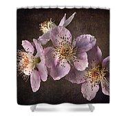 Blackberry Flowers Shower Curtain