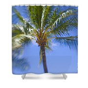 Blurry Palms Shower Curtain
