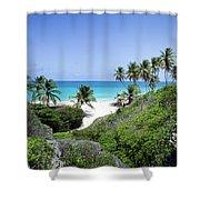 Bottom Bay Shower Curtain