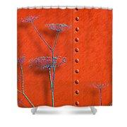 Box Car Shower Curtain