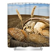 Bread And Wheat Cereal Crops. Shower Curtain
