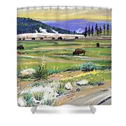 Buffaloes In Yellowstone Shower Curtain