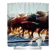 Bull Run Shower Curtain