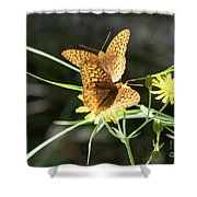2 Butter Flies Shower Curtain