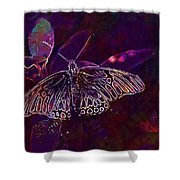 Butterfly Insect Wing Wildlife Bug  Shower Curtain