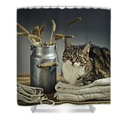 Cat Portrait Shower Curtain