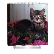 2 Cats In The Flowers Shower Curtain