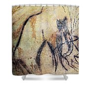 Cave Art: Mammoth Shower Curtain