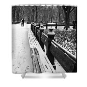 Central Park 8 Shower Curtain